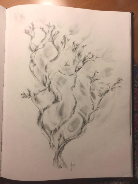 The poolside tree