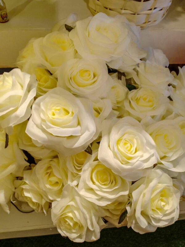 White-Roses-AHR101L
