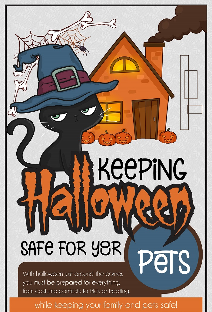 Keeping Halloween Safe For Your Pets – An Infographic