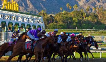 Horse racing in Arcadia, California