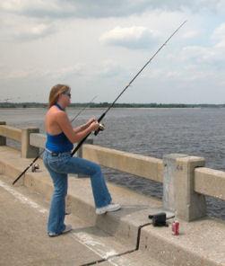 bridgefishing