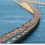 Festivals and Events 7 Mile Bridge Run