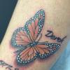 butterfly-jpeg