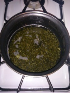 Lemon Balm and Coconut Oil over heat