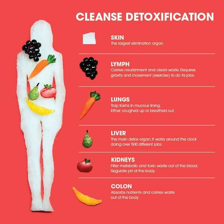 CleanseDetoxification thejuicetruck