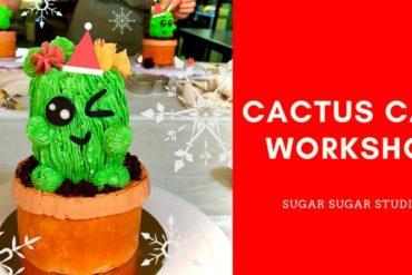 cactus cake workshop