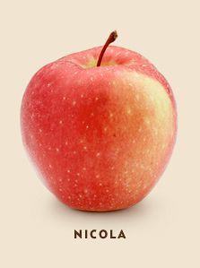 nicola bcfruitree