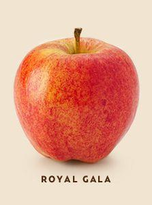 royal gala bcfruittree