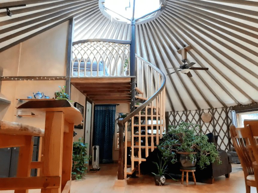 Best airbnb in B.C. the rainforest yurt