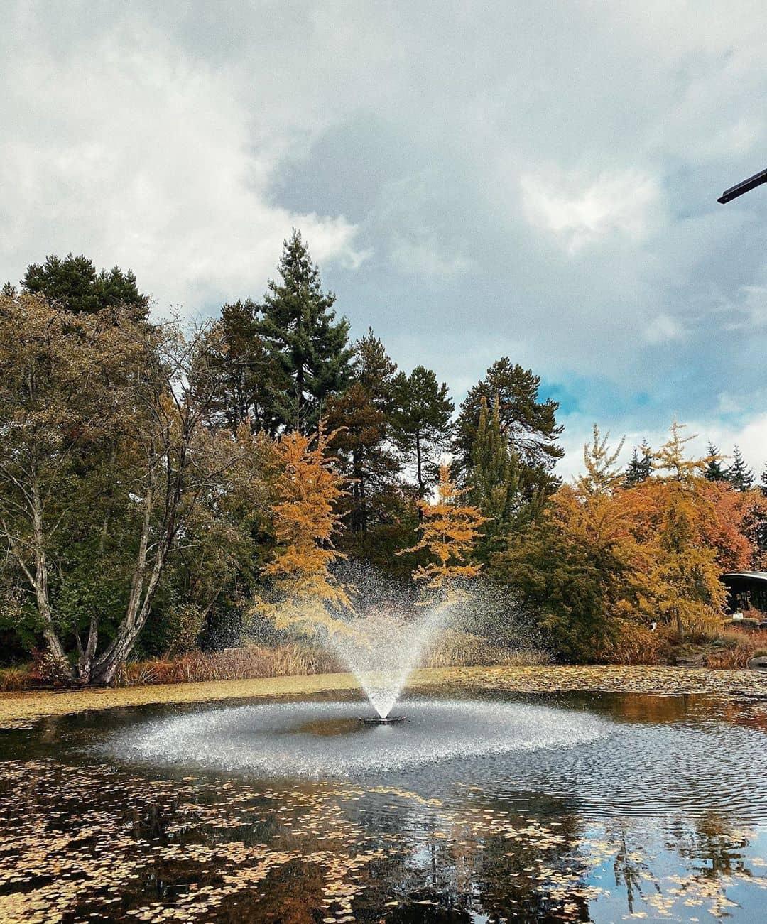 visit around vancouver during fall . vandusan garden 1