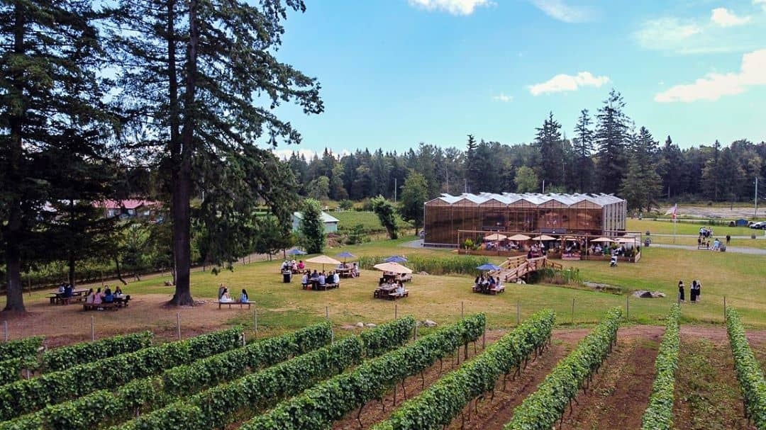 Glass House estate winery 1