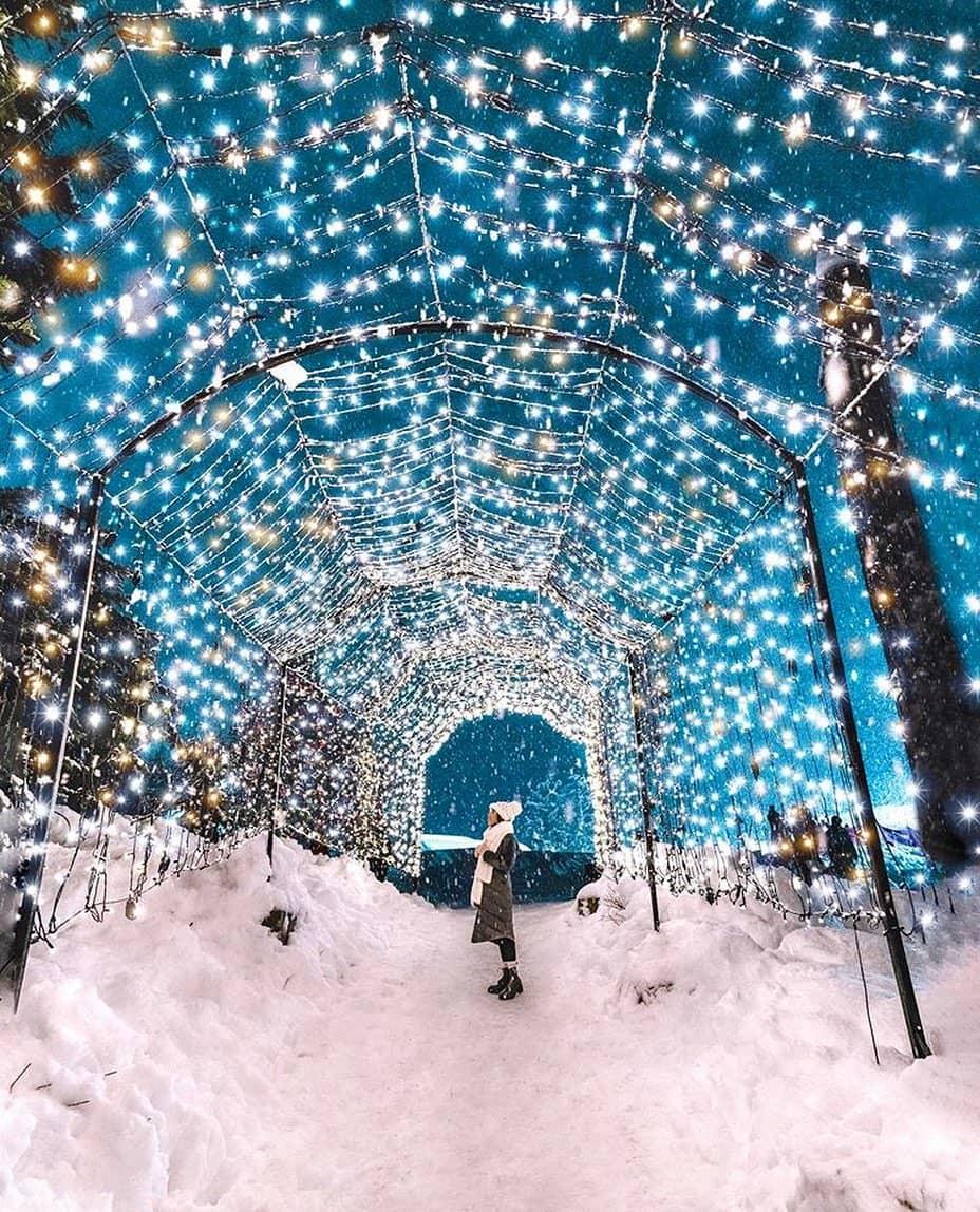 Grouse Mountain Guide christmas lights