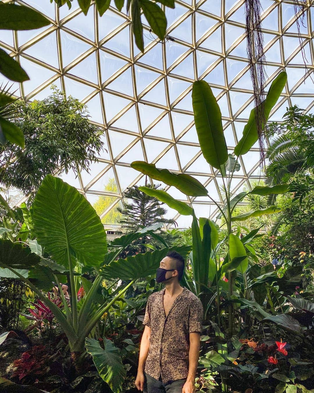 Places to visit around vancouver during spring bloedel