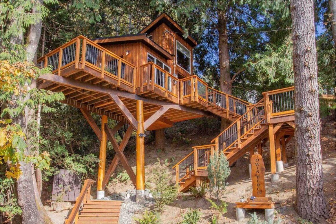 coolest airbnbs in canada owls perch treehouse