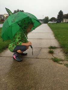 Sarah Anne, during a recent storm watching worms on the sidewalk