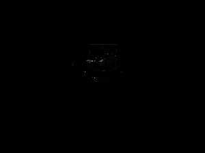 Empire logo new FULL
