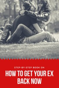 https://thelovegal.com/how-to-get-your-ex-back-guide/