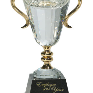 "10"" CRYSTAL CUP W/GOLD METAL HANDLES"