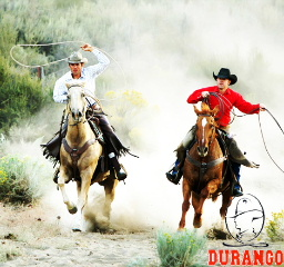 Durango Products sold at Croixland Leather in Osceola, Wisconsin