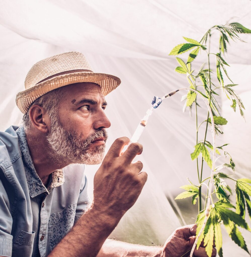 Man with Cannabis Plant