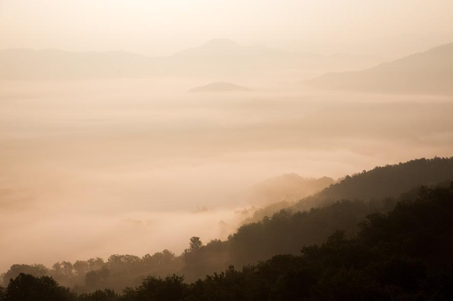 Environmental landscape out. Photo by: unsplash.com