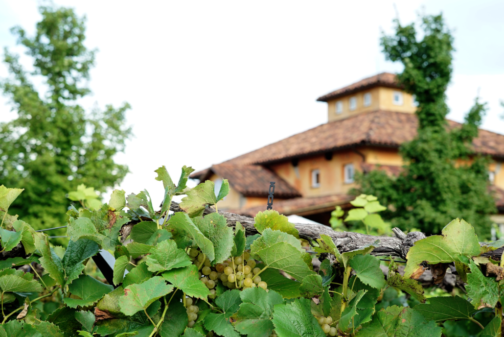 Blue Sky Vineyards, a Southern Illinois winery on the scenic wine trail. Photo by: Matthew McGuire