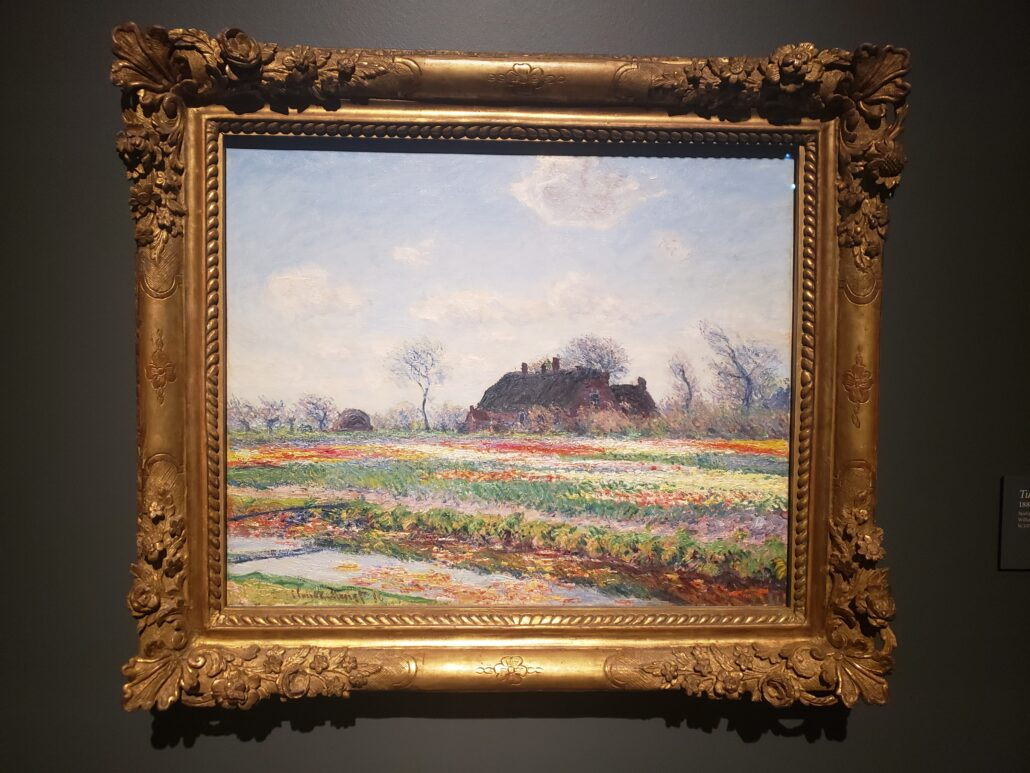 Tulip Fields at Sassenheim. Painting by Claude Monet in 1886. Photo by: Matthew McGuire
