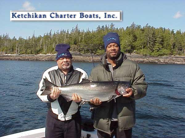 A nice king Salmon