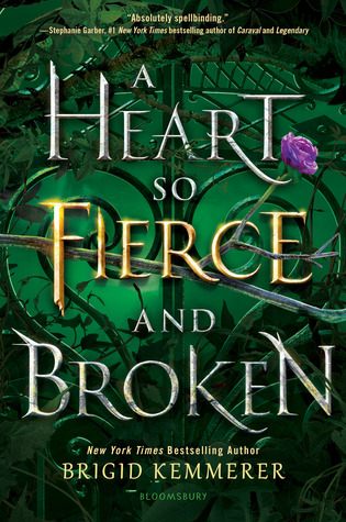 The Story of Grey: 'A Heart so Fierce & Broken' Book Review