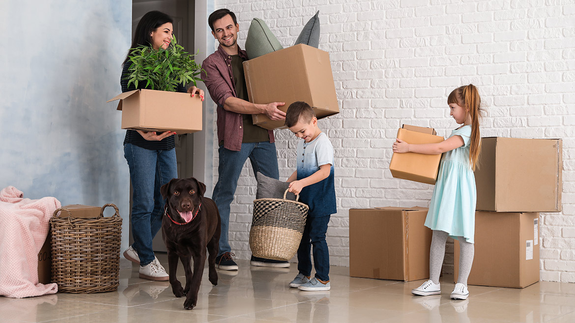 Moving with Your Pet(s)
