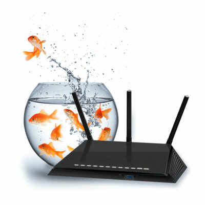 https://secureservercdn.net/198.71.233.138/vpx.295.myftpupload.com/wp-content/uploads/2019/09/Fish-Network-ROuter-400x400.jpg