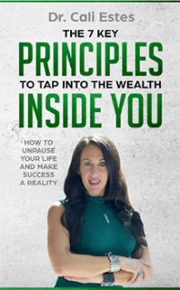 7 Principals To Tap Into The Wealth Inside You.