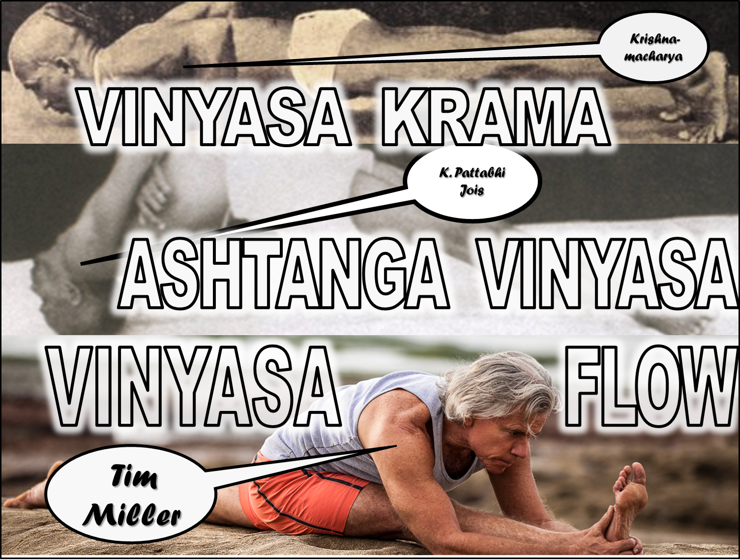 The Whole History of Yoga and Techniques of Silent Vinyasa at Yoga Within, Aptos, California