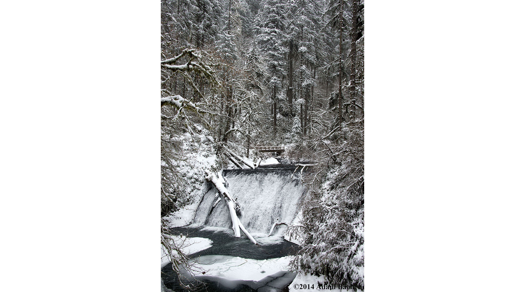 silver falls state park oregon
