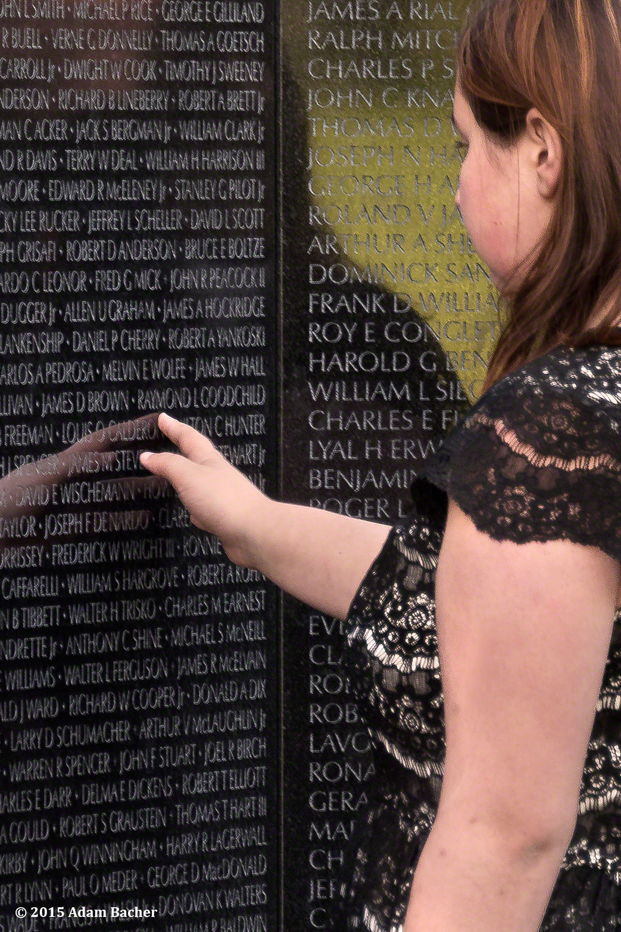 Veterans Day and Vietnam War memorial
