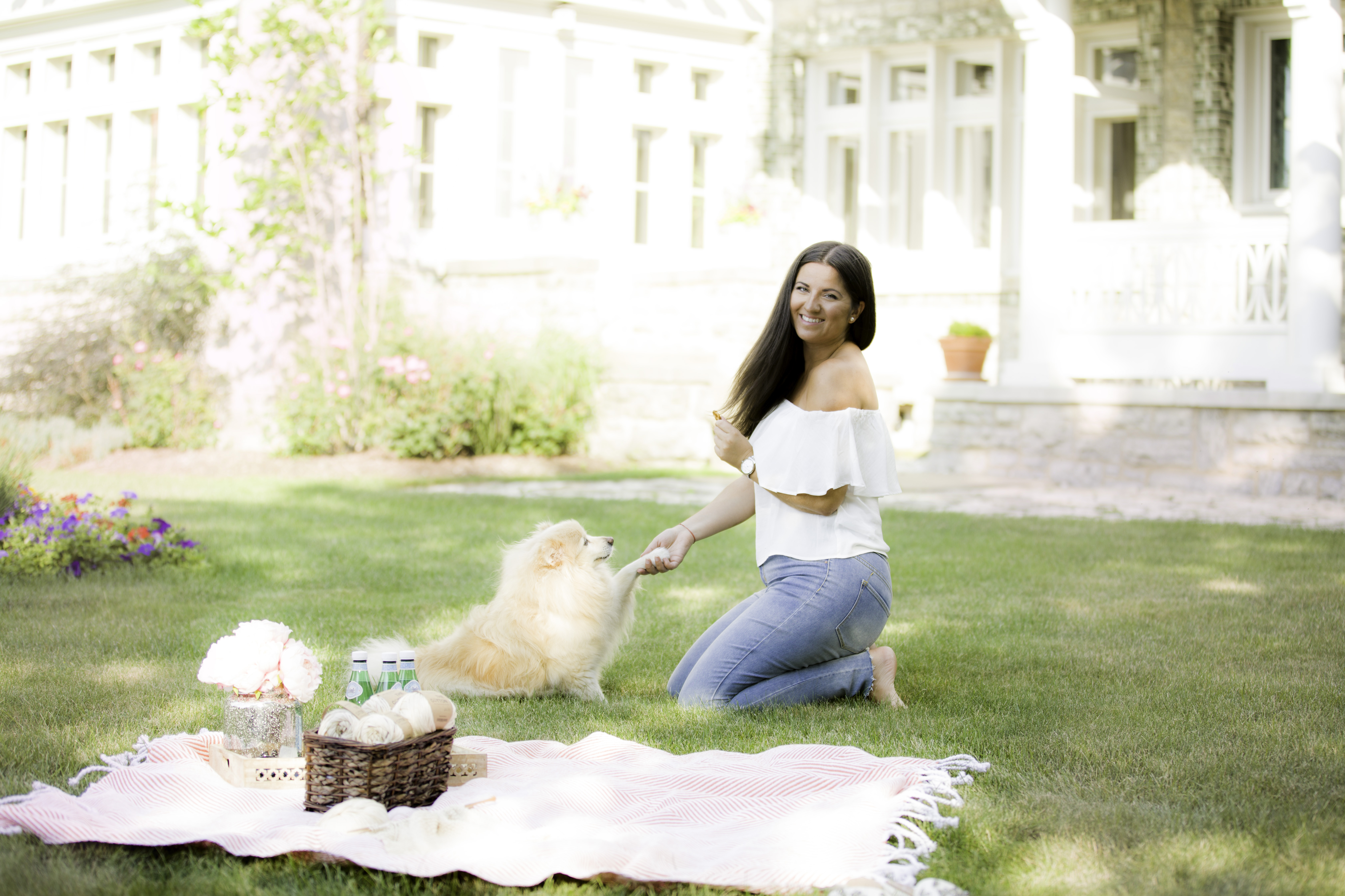 we are knitters, how knitting taught me skills to run a business, chicago blogger, baily lamb