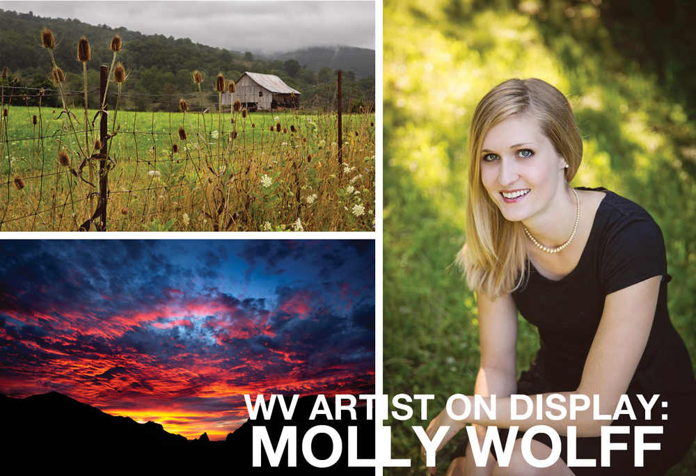 WV ARTIST ON DISPLAY: MOLLY WOLFF
