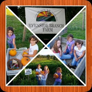 byrnside branch farm kids