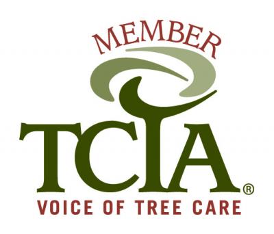 TCTA member