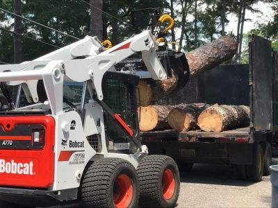 Tree Removal and Debris Cleanup from Taylor Tree Service