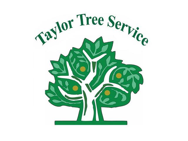 Taylor Tree Service