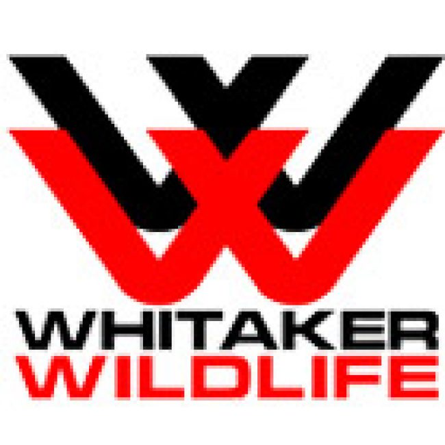 Whitaker Wildlife & Pest Removal