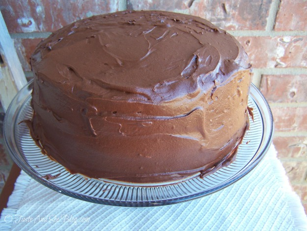 fudge ripple cake 051