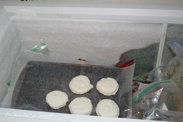 frozen biscuits 006