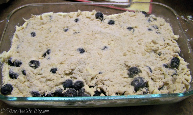 blueberry Buckle 088