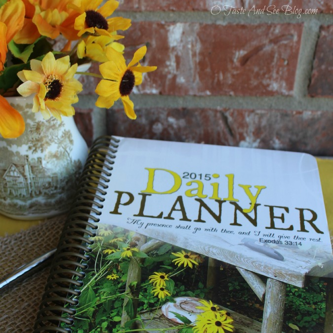 2015 Daily Planner review # ad 449