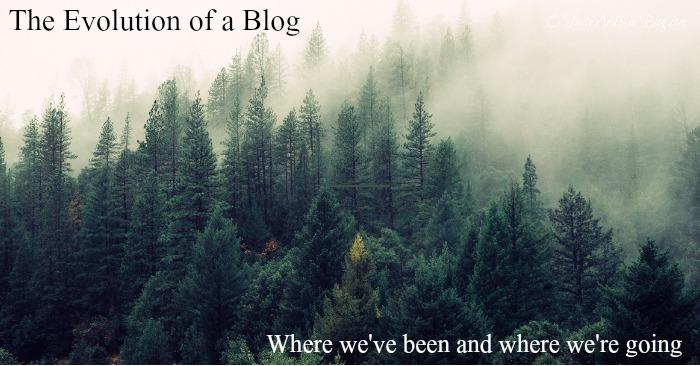 evolution of a blog