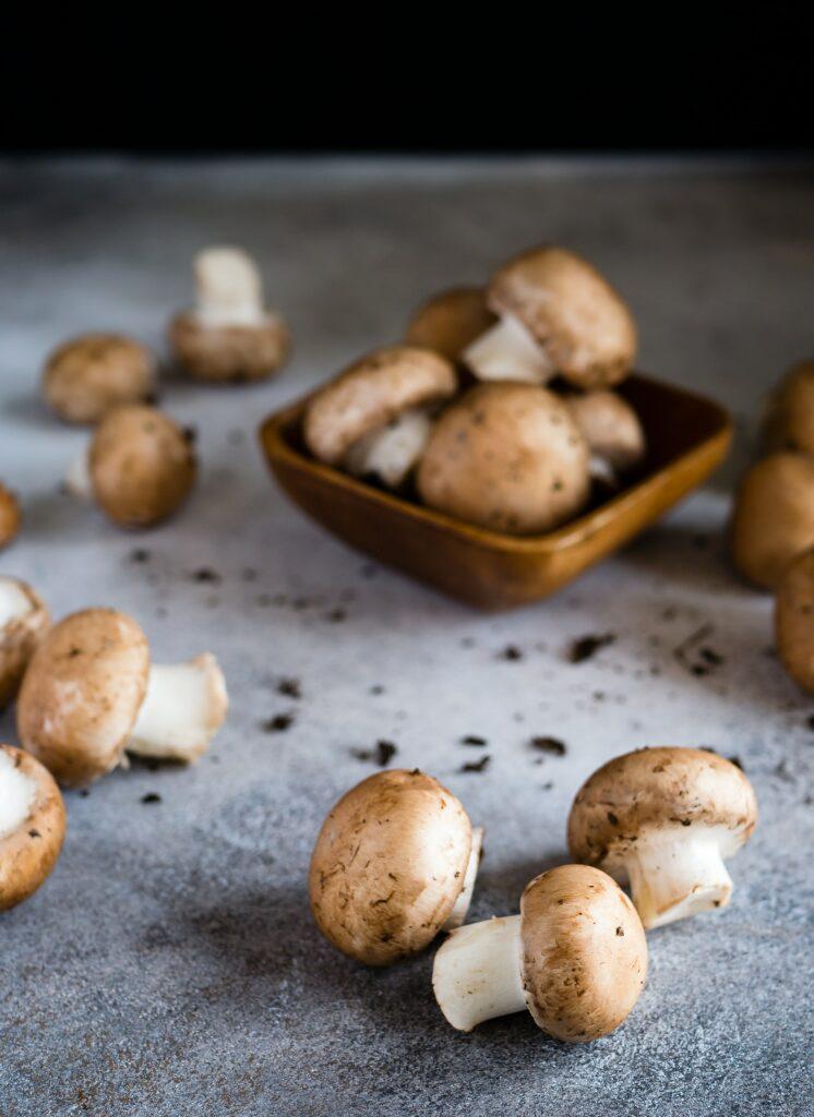 Sample Mushrooms Stock Photo