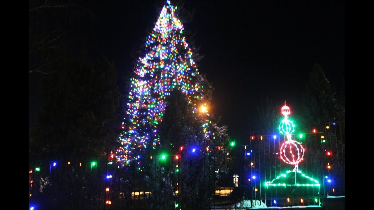 Photo from Herald and news video of 2017 Tree Lighting Ceremony