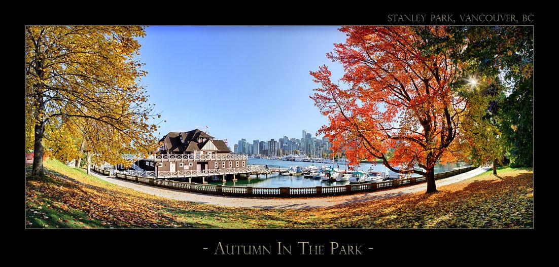 Autumn In The Park - 2784